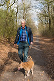 Gehender Hund des älteren Mannes im Wald Lizenzfreies Stockfoto