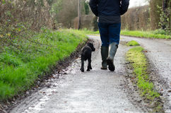 Gehender Hund des Mannes Stockfotografie