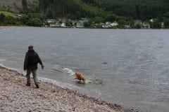 Gehender Mann ein surfendes 3Legged Labrador Lizenzfreie Stockbilder