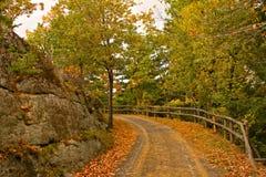 Gehender Pfad im Herbst Stockfotografie