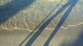 Gehender Schatten nahe dem Strand stock footage