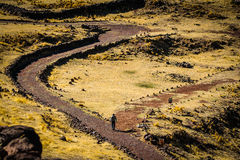 Gehender Wanderer eine inka Spur am puno Peru stockfotos