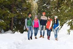 Gehender Winter Leute-Gruppen-Schnee-Forest Happy Smiling Young Friendss im Freien Lizenzfreie Stockfotos