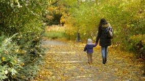 Gehendes Händchenhalten der Mutter und der Tochter am Park Sie tragen warme Kleidung, Autumn Season Ansicht von der Rückseite stock footage