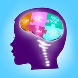 Gehirn-Entwicklungskonzept des Kindes Wesentliche Mineralien vektor abbildung