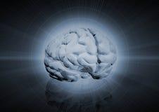 Gehirn-Hintergrund Stockbild