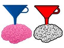 Gehirn mit Kegeltrichter Stockbild
