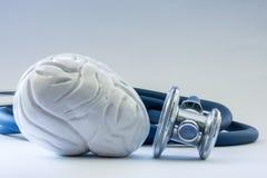 Gehirn nahe dem Stethoskop als Symbol der Gesundheit des Organs, der Sorgfalt, der Diagnosen, der medizinischen Prüfung, der Beha Lizenzfreie Stockfotografie