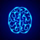 Gehirn vom blauen Neon zeichnet Vektorhintergrund Stockfotografie