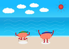 Gehirne auf dem Strand Stockbild