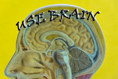 Gehirnmotivzitatplakat Lizenzfreie Stockbilder