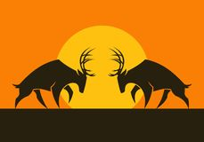 Gehoornde deers vectorsilhouetten tegen de zon stock afbeelding