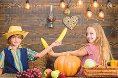 Gehouden voor dagelijkse landbouwbedrijfkarweien verantwoordelijk Van de het meisjesjongen van jonge geitjeslandbouwers de Kinder stock afbeelding