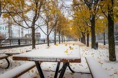 Gehweg auf dem ersten Schnee mit Gelb verlässt das Fallen von Bäumen - Montreal, Quebec, Kanada stockfotos