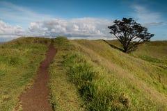 Gehweg auf die Oberseite eines Hügels Stockfotografie