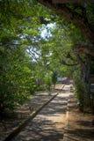 Gehweg auf Park, Barichara, Santander, Kolumbien Lizenzfreie Stockbilder