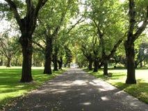 Gehweg, Carlton Gärten, Melbourne, Australien lizenzfreies stockbild