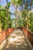 Gehweg in den publuc Tempel im Wald, der mit Ziegelsteinboden und Stahlzaun konstruierte Lizenzfreies Stockfoto
