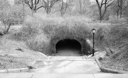 Gehweg, der einen Tunnel in einem Stadtpark im Winter Schwarzweiss mit Laternenpfahl und Bäumen durchläuft Lizenzfreie Stockfotografie