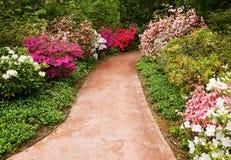 Gehweg durch Blumengarten Stockbild