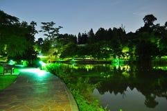 Gehweg durch den Teich nachts Stockbild