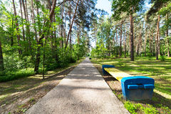 Gehweg in einem Stadtpark Stockbild