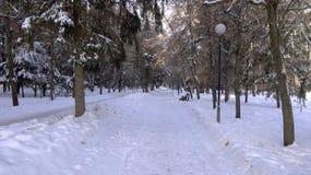 Gehweg in einem Stadtpark im Schnee lizenzfreie stockfotos