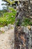Gehweg gepflasterte Straße drehen herum Felsen Stockbilder