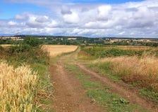 Gehweg im England Stockbild