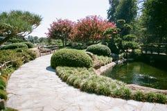 Gehweg im japanische Art-Garten Lizenzfreies Stockfoto