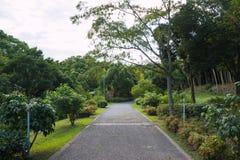 Gehweg im Park Lizenzfreie Stockfotos