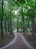 Gehweg im Park Lizenzfreies Stockfoto