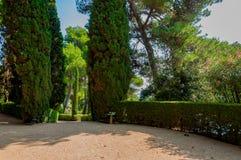 Gehweg im Park mit dem hellen Grün Lizenzfreie Stockfotos