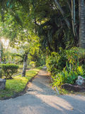Gehweg im Park am Morgen Lizenzfreie Stockbilder