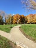 Gehweg im sonnigen Herbstpark lizenzfreie stockfotos