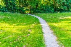 Gehweg mit Gras und Baumparklandschaft Stockfotografie