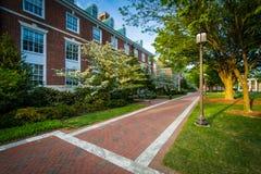 Gehweg und Gebäude an den Universität John Hopkins, in Baltimore, lizenzfreies stockbild