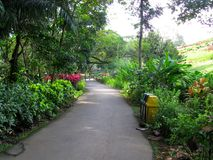 Gehweg und Kalesa-Weg, La Mesa Ecopark, Quezon-Stadt, Philippinen stockbild