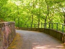 Gehweg-Weg-Weg mit grünen Bäumen Stockbild