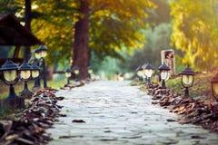 Gehweg-Weg-Weg mit grünen Bäumen und kleinen Laternen Stockfotografie