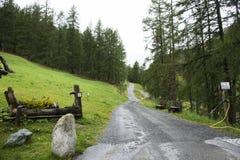 Gehweg zerquetschter Steinweg für das Gehen und das Wandern und das Radfahren gehen zum Wald und zum Alpenberg an Samnaun-Dorf Stockbild