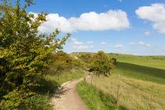 Gehweg zu BRITISCHER englischer Landschaft Ivinghoe-Leuchtfeuer Chiltern-Hügel Buckinghamshire England Lizenzfreies Stockfoto