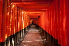 Gehweg zwischen Torii-Toren Stockfotografie