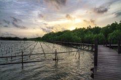 Gehwegbrücke im Sonnenuntergang Stockfotos