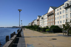 Geißblatt-Promenade Stockfotografie