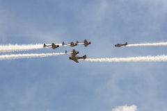 Geico Skytypers SNJ-2 World War II-era planes Royalty Free Stock Photo