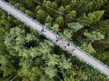 Geierlay upphängningbro, Moersdorf, Tyskland Arkivfoton