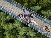 Geierlay upphängningbro, Moersdorf, Tyskland Royaltyfri Foto