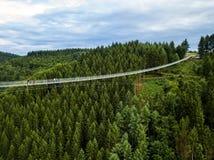 Geierlay upphängningbro, Moersdorf, Tyskland Fotografering för Bildbyråer