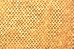 Geige geometric grid wallpaper Royalty Free Stock Image